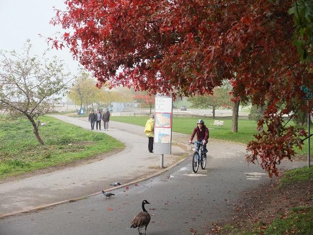 Park.Bike.Lane.04
