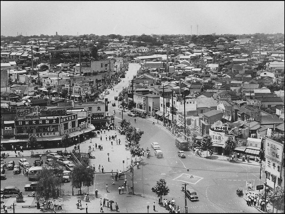 Shubiya 1952