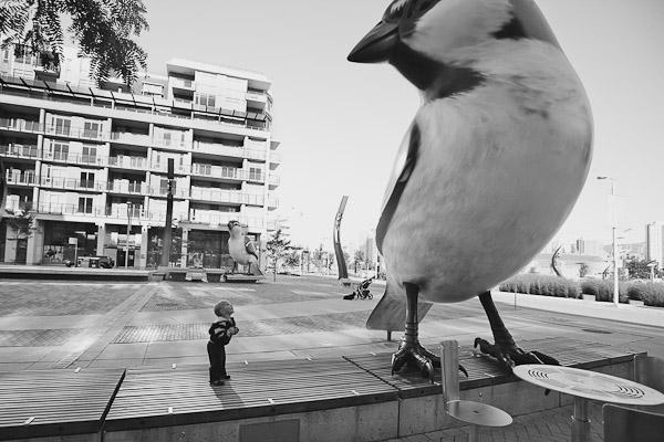 PT bird public art