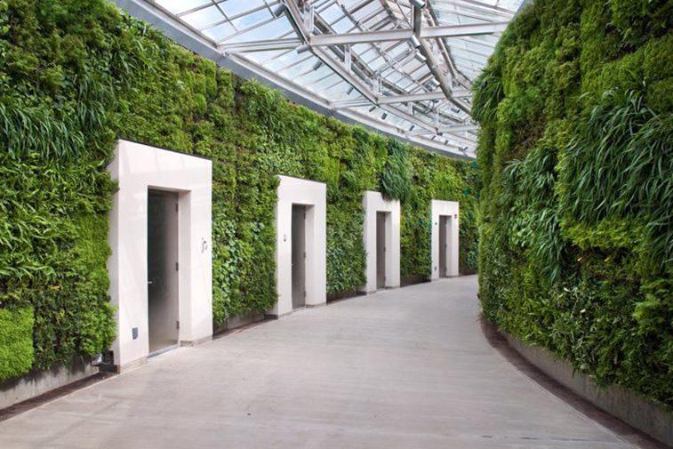 green-walls-office-design-biophilia
