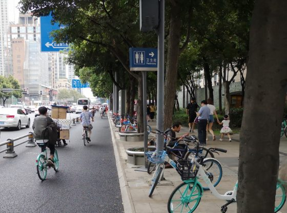Chengdu Bike Lane