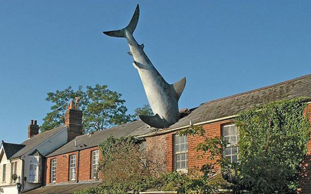"""Featured image for """"A Whale of a Tale~People Magazine & the Hedlington Shark"""""""
