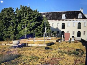 """Featured image for """"Green Roofs? Welcome to the 21st Century Upgrade: Blue Roofs"""""""