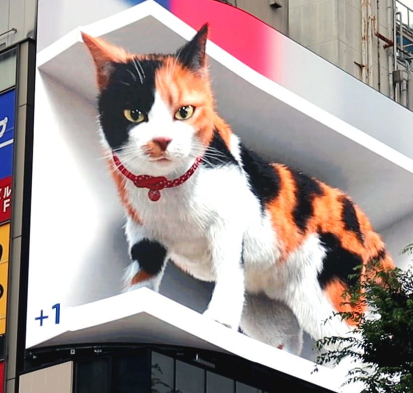 """Featured image for """"The Shinjuku Cat"""""""